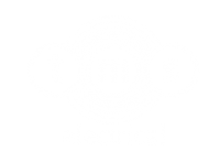 TMS electrical